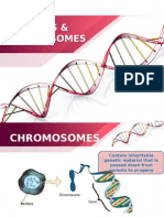 5.3 Genes and Chromosomes