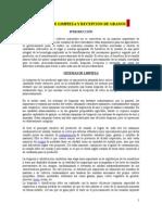 SISTEMAS+DE+LIMPIEZA+Y+RECEPCION+DE+GRANOS