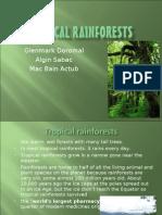 tropicalrainforest