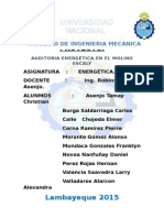 AUDITORIA ENERGETICA MOLINOS ESCALY