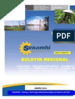 01 Boletin Regional Ene 2014 Huanuco