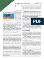 ATUALIDADES - cespe.pdf