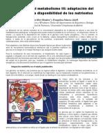 Integracion Metabolismo III (1)