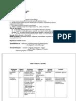 Spania - Proiect de Lectie Geografie - Clasa a VI-A