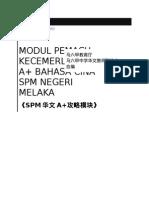 《SPM华文A+攻略模块》.docx