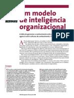 Modelo de Inteligencia Organizacional