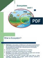 AM Ecosystem