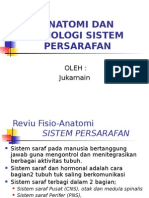 Anatomi Dan Fisiologi Syaraf Br