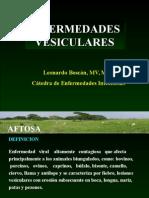Clase Aftosa-estomatitis Copia (1)