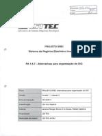sREI - 426-435 - Alternativas para organização do SIG.pdf