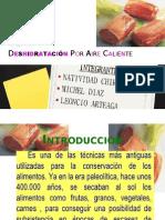 Expo-Deshidratación Por Aire Caliente-Proc. 3