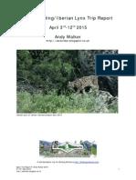 Spain Birding/Iberian Lynx Trip Report
