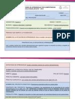 Diseño Didácticos de Situaciones de Aprendizaje Por Competencias (Proyecto 3)