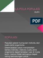 Pola Pola Populasi