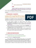 Paper - Atencion Dividida