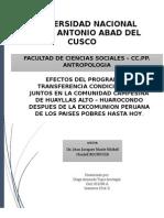 Trabajo Rediseñado_final de Las Practicas Pre Profesionales 2014
