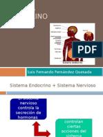 Patologías Endocrino