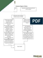 Schematic Diagram Cva