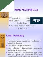 Tumor Mandibula