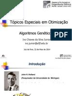 Apresentação AG sobre optimização