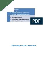 22_08_10_09PRS_VII_-X_Roci_carbonatice.pdf