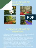 Albumulflorilodeprimavara p[1].p