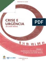 Fundamentos Da Atenção à Crise e Urgencia Em Saude Mental