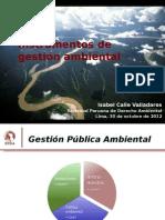 4 Instrumentos de Gestión Ambiental SPDAVF