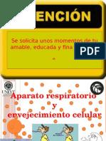 aparatorespiratorioyenvejecimiento-120429195544-phpapp01