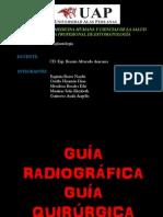 Guia Radiografica
