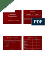Patologías y reparaciones del hormigon