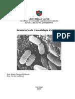 Laboratorio Microbiologia 2012