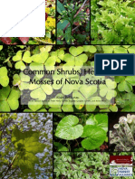 Common Plants of Nova Scotia