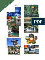 10 Recursos naturales renovables.docx