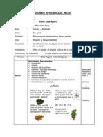 Primaria-Junio-5-Sesion_2.pdf