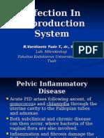 Infeksi Sistem Reproduksi