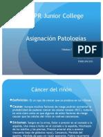 asignacion patologias