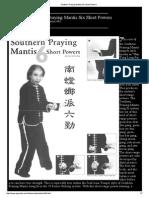 Seis  poderes del Mantis del Sur.