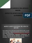 Marco Jurdico Del Am