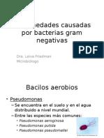 (8) Bacterias Gram Negativas