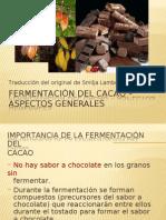 Fermentacion Del Cacao
