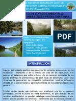 Exposicion_final_proyectos de Servicios Ambientales
