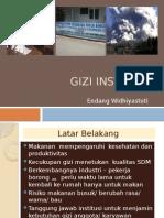 Gizi Institusi 2013
