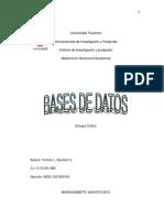 Ensayo critico bases de datos.pdf