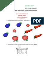 Evaluare Semestriala Act Matemaatica