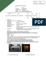 Polimetil Metakrilat (PMMA)