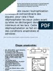 Selection Microbienne Pour Les Bacteries Accumulant Le Polyphosphate