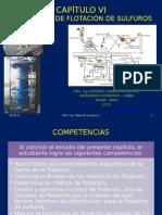 Capítulo Vi. Tecnologia de La Flotación de Sulfuros