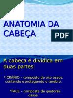 anatomia_cabeca.ppt