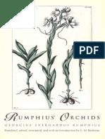 eBook Rumphius' Orchids
